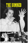 DAMNED - PICTURES BOOK BY MICK MERCER